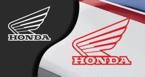 Stickers aile honda 5 (PARADISE Déco)