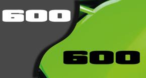 Stickers kawasaki 600 (PARADISE Déco)
