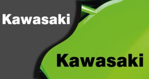 Stickers logo kawasaki (PARADISE Déco)
