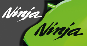 Stickers kawasaki ninja (PARADISE Déco)