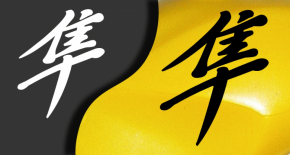 Stickers Hayabusa suzuki (PARADISE Déco)