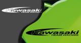 Stickers kawasaki racing team (PARADISE Déco)