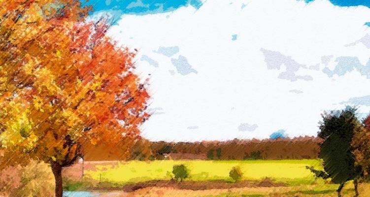 Stickers boite aux lettres automne (PARADISE Déco)